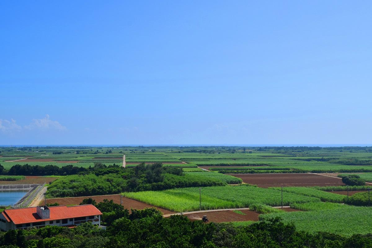 多良間村 島の農業を支援する地域おこし協力隊を1名募集します!