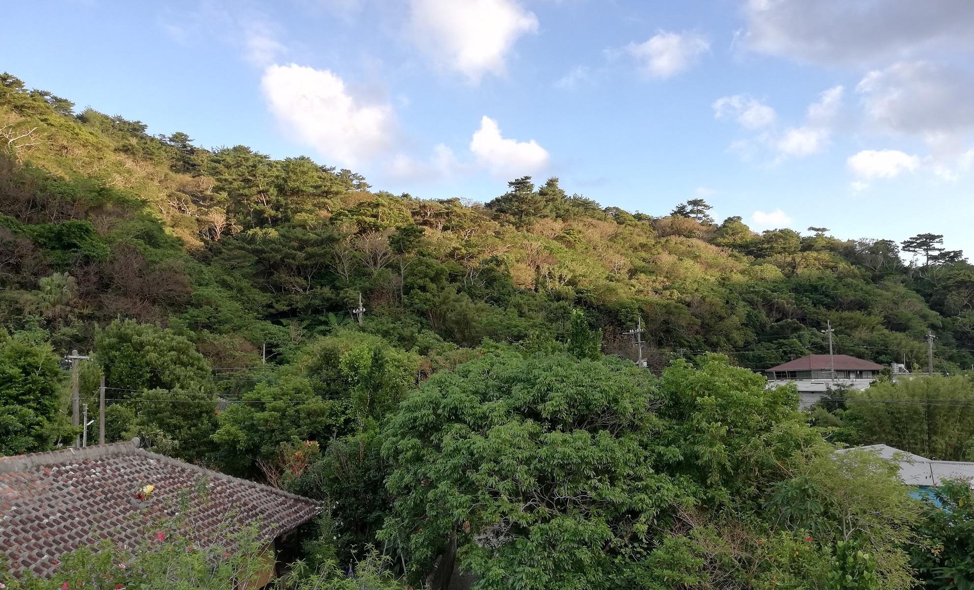 [空き家活用住宅]沖縄本島北部!やんばるの緑に囲まれた集落内の1戸建・定住促進空家活用住宅(奥)の入居者募集について